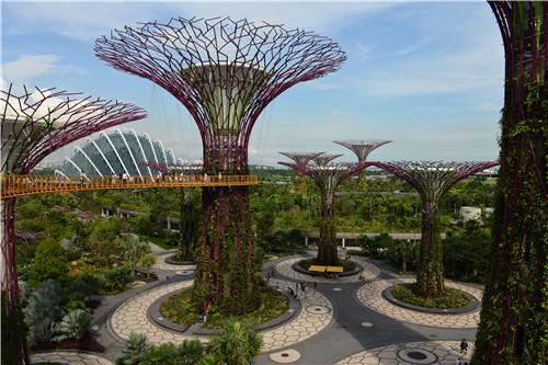 是新加坡唯一的天然沼泽公园