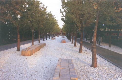 秦皇岛植物园:植物园的当代设计探索