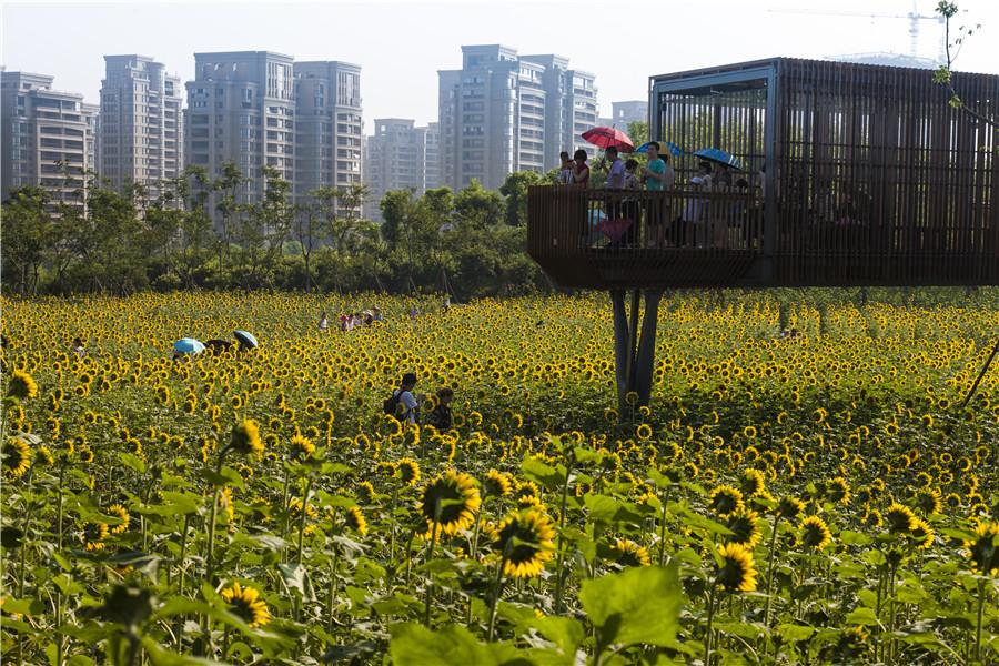 土人设计网 - 北京土人城市规划设计有限公司