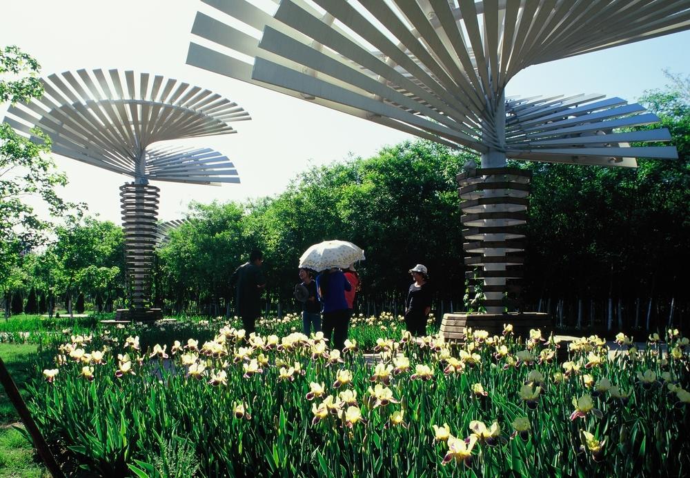 本园以展示本土植物为特色,融科普及景观体验为一体。植物展示与生态知识、环境伦理、可持续理念及当代景观设计手法相结合,形成多个各具特色的景区,包括:展示药用植物的园外园,以展示土壤与植物关系为特色的土壤轴,以展示滨河群落为特色的滨水带,以展示山地植被为特色的北部山地,以展示城市植物及其文化为特色的专类园区,各区之间又以蜿蜒全园的万花径相勾连。设计从材料、色彩、植物种类和空间设计手法诸方面,彰显当代中国之特色。